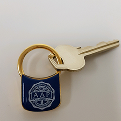 AAP Key Chain