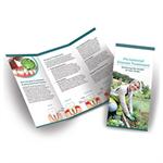 Periodontal Disease Treatment Brochures